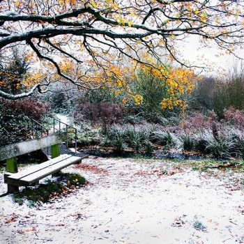 12.-Winters-bench