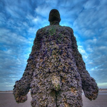 Anthony-Gormley-Crosby-Beach-(1-of-1)