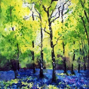 Spring-bluebell-landscape-main