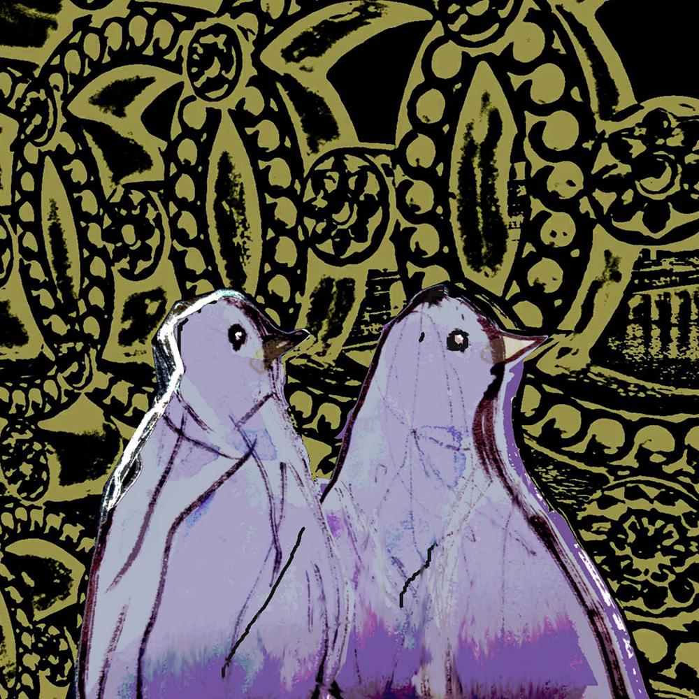 Pigeons-leeds-Bridge-night